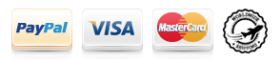 Payment platforms icons